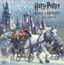 Harry Potter. Natale a Hogwarts - Il libro pop-up